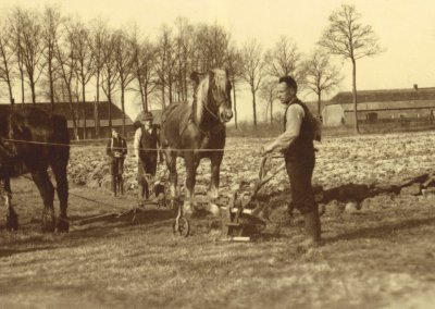 1950 Wederopbouw: van agrarisch dorp naar stedelijk woongebied