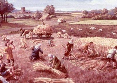 Archeologie Algemeen Nuenen in de Vroege Middeleeuwen